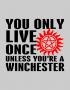 yolo winchester des
